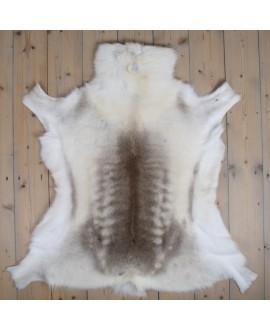 Reindeer Skin - Uniquely...