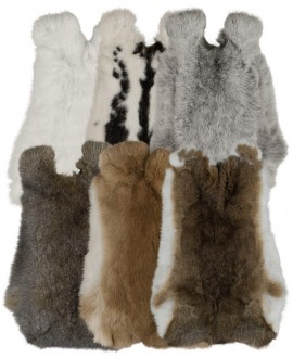 Collection of Rabit Furs